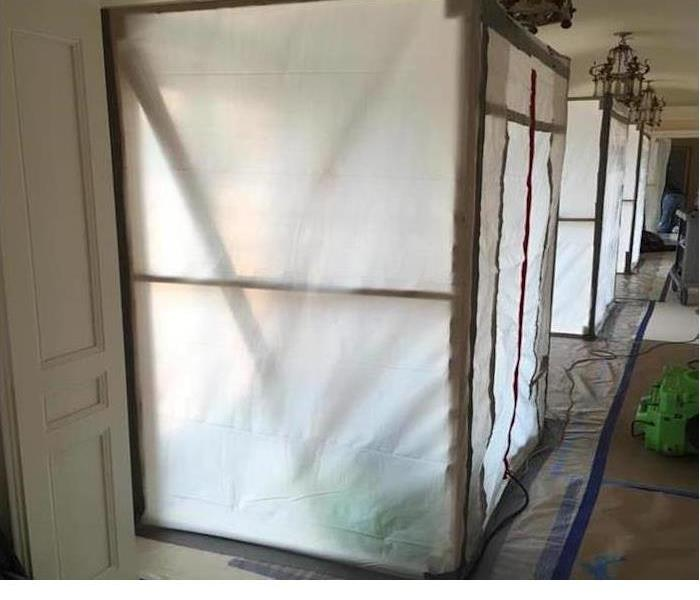 Mold Remediation on Amelia Island