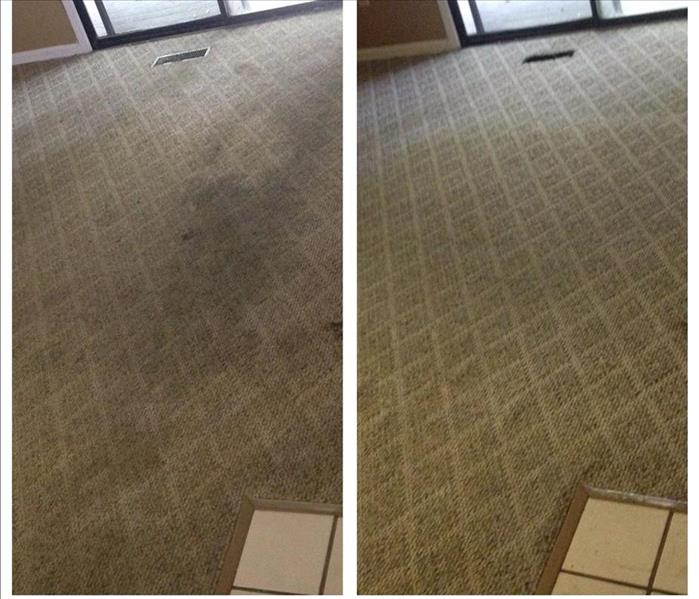 Rental Condo Carpet Cleaning