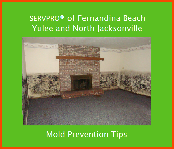Mold Remediation Mold Prevention Tips - Preventing Mold Before It Happens