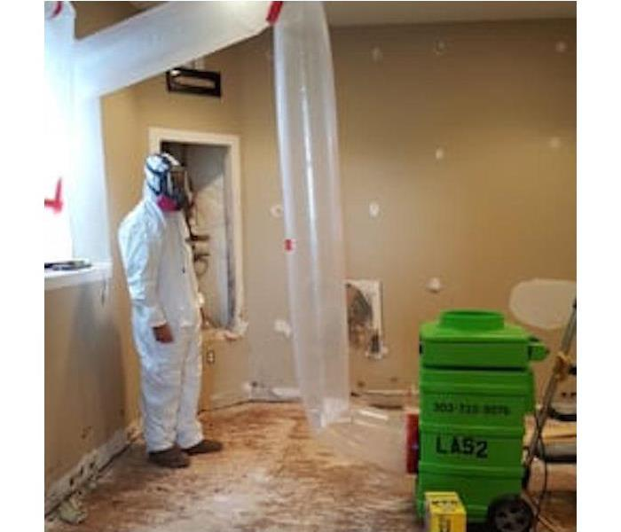 Mold Remediation Questions to Ask When You are Looking for a Mold Remediation Contractor