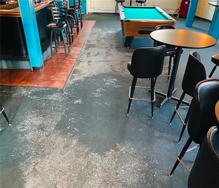 Mold growth on bar floor with stools, tables, chairs and pool table shown as well.