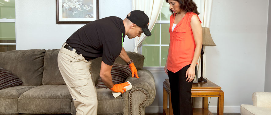 Fernandina Beach, FL carpet upholstery cleaning