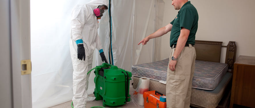 Fernandina Beach, FL mold removal process